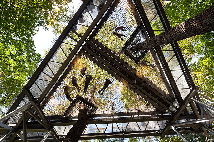 morris arboretum: architettura e biofilia